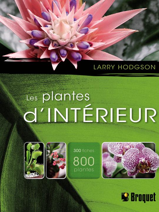 les plantes d int rieur jardinier paresseux. Black Bedroom Furniture Sets. Home Design Ideas