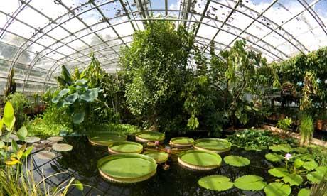 Venez visiter les jardins du c ur d angleterre for Jardins anglais celebres