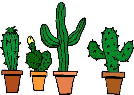 semer des cactus jardinier paresseux. Black Bedroom Furniture Sets. Home Design Ideas