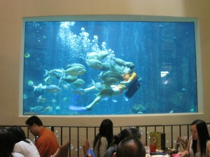 Hawaii Oceanarium