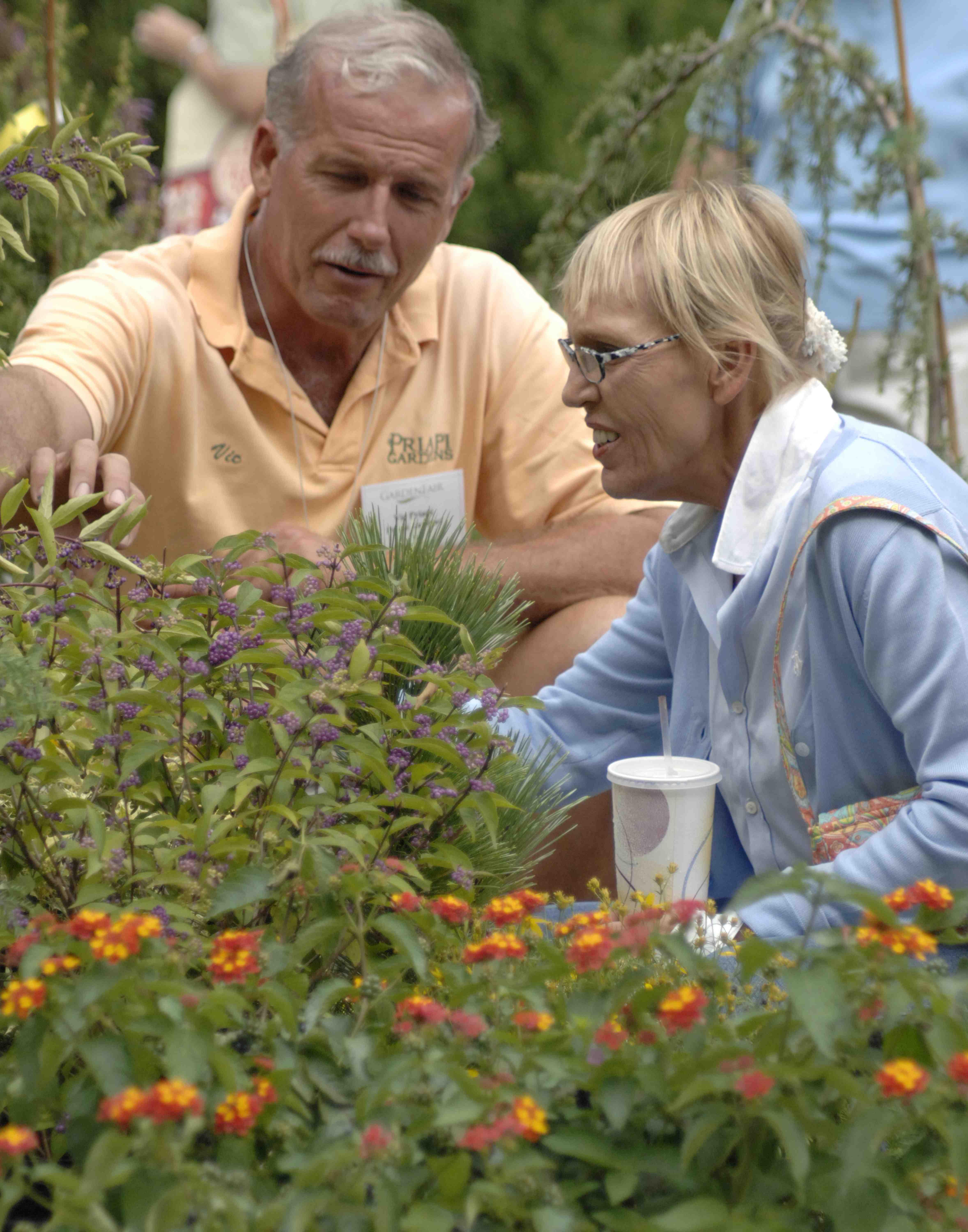 Questions poser avant d acheter une plante et qui les for Acheter les plantes