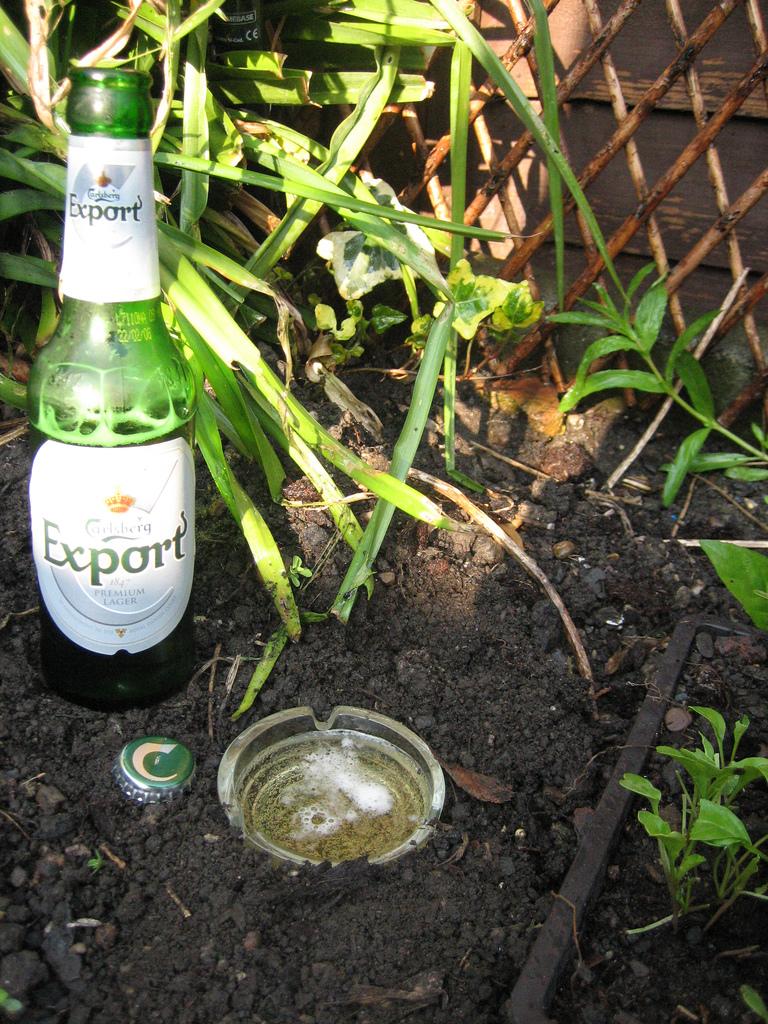Pi ges limaces fait maison base de bi re avie home - Pieges a limaces fait maison a base de biere ...