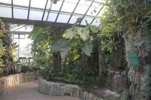 Jardin du cascade