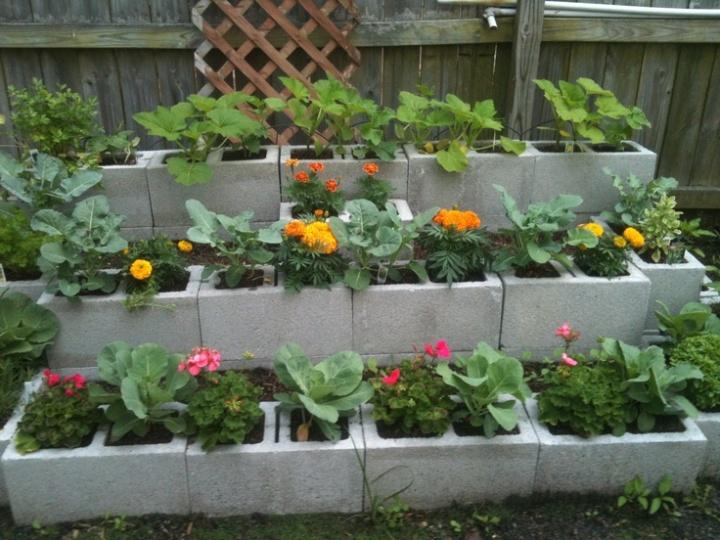 Un jardin sur lev en blocs de b ton jardinier paresseux for Bloc beton jardin