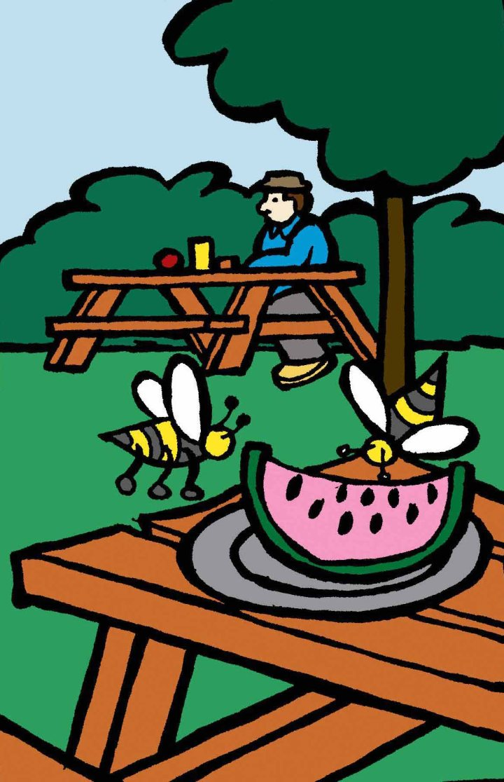 Utilisez des fruits pour attirer les guêpes loin de votre lieu de piquenique.