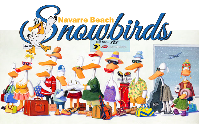 NB-Snowbirds-Photo.png