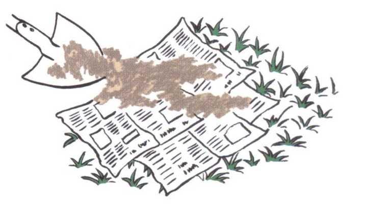 Truc 13 B -Couvrir papier journal de terre.JPG