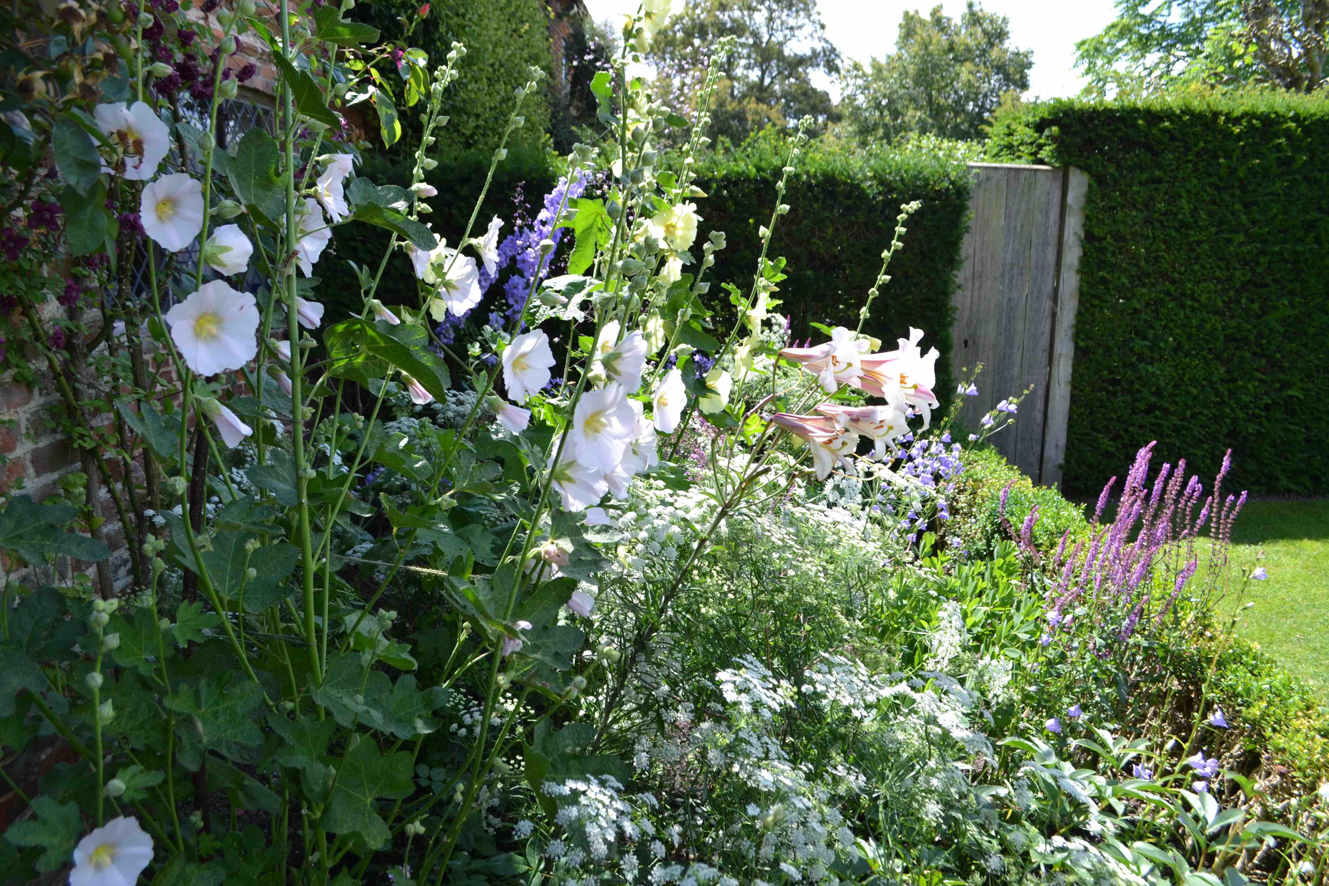 21070619A Sissinghurst Garden.jpg
