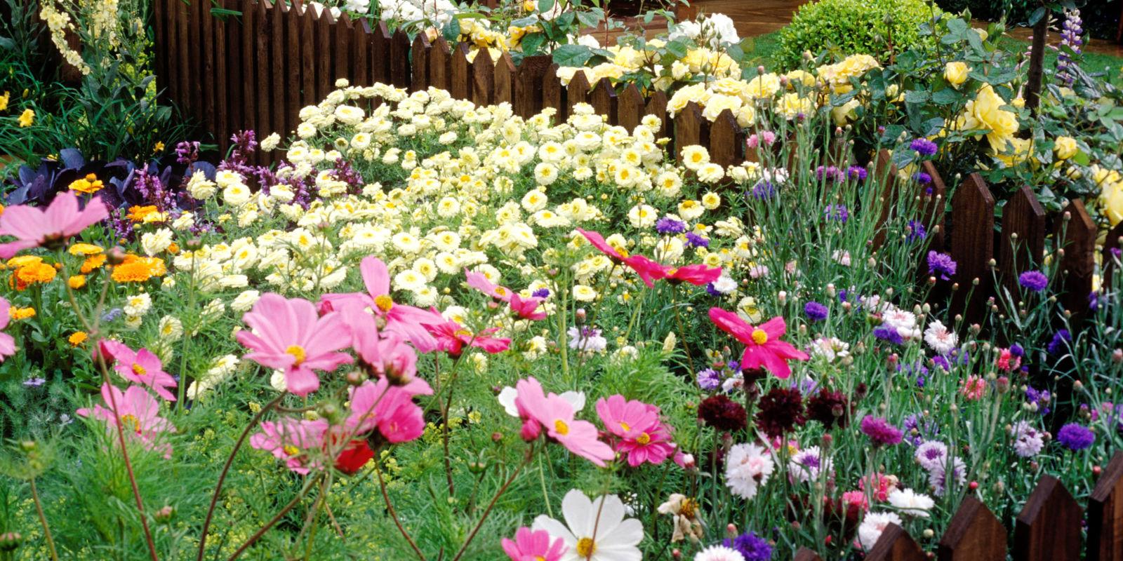 Pens 233 E Du Jour Jardinier Paresseux