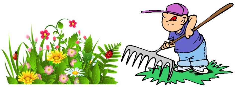 comment faire le m nage quand la plate bande n arr te pas de fleurir jardinier paresseux. Black Bedroom Furniture Sets. Home Design Ideas
