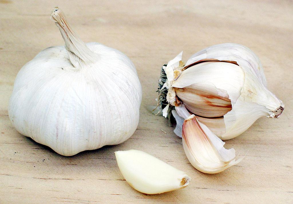 Bulbe ail blanc et gousses d'ail.