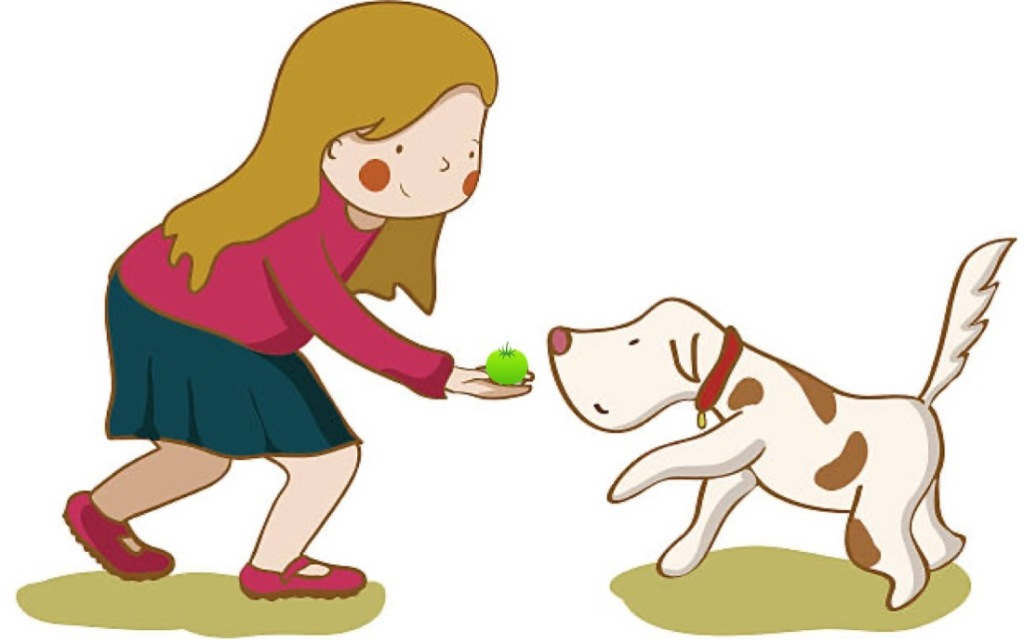 Illustration d'une jeune fille qui donne une tomate verte à un chien.