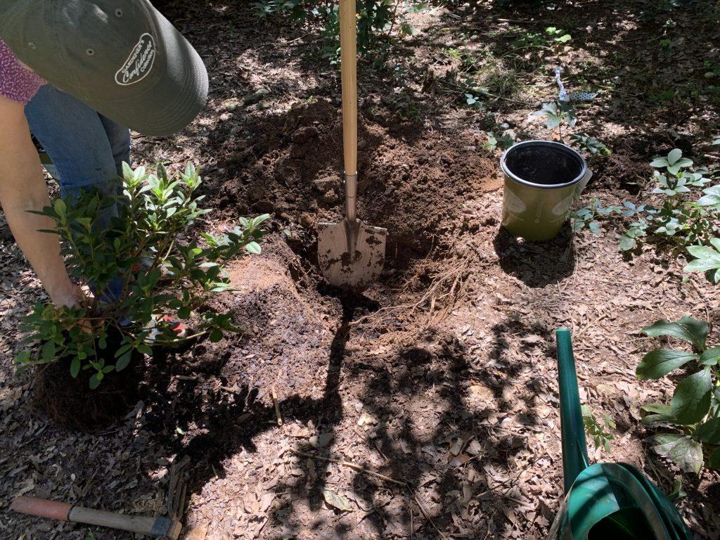 Pelle pour mesurer trou de plantation