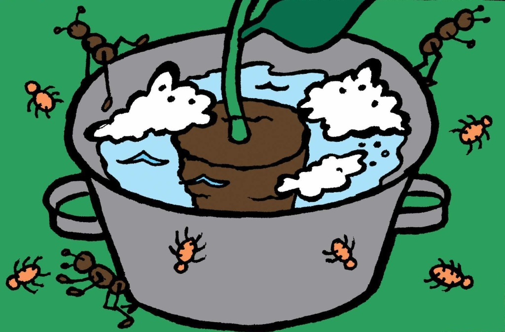 Pot plongé dans de l'eau savonneuse