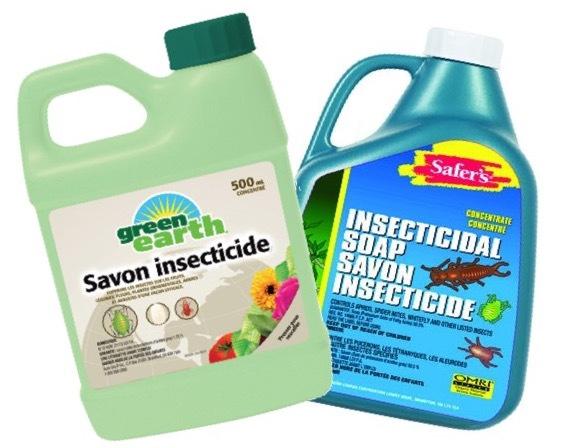 2 bouteilles de savon insecticide