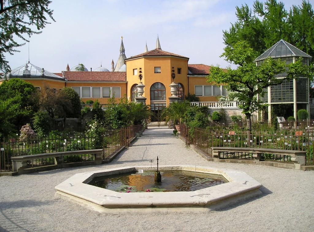 Jardin botanique de Padoue