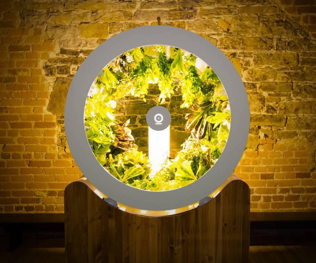 Jardin rotatif éclairé avec légume à l'intérieur.