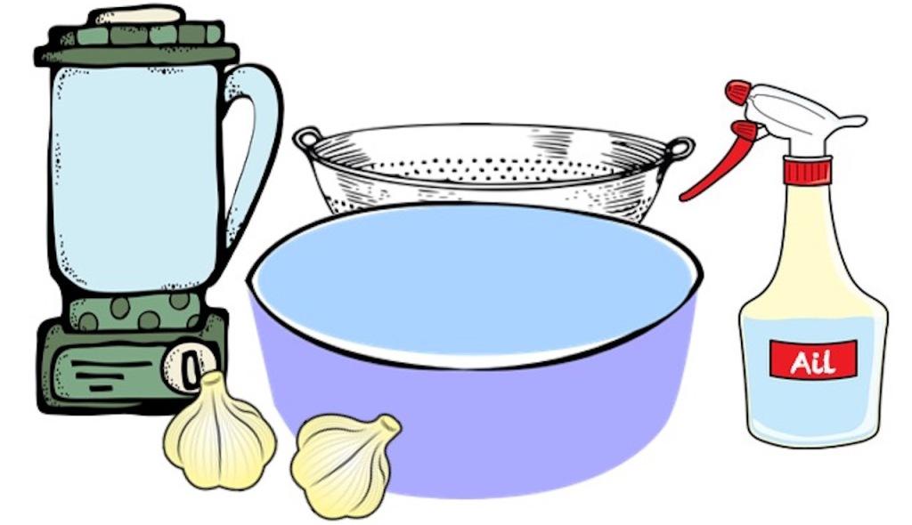 Ingrédients: Mélangeur, gousses d'ail, bol, passoire, vaporisateur