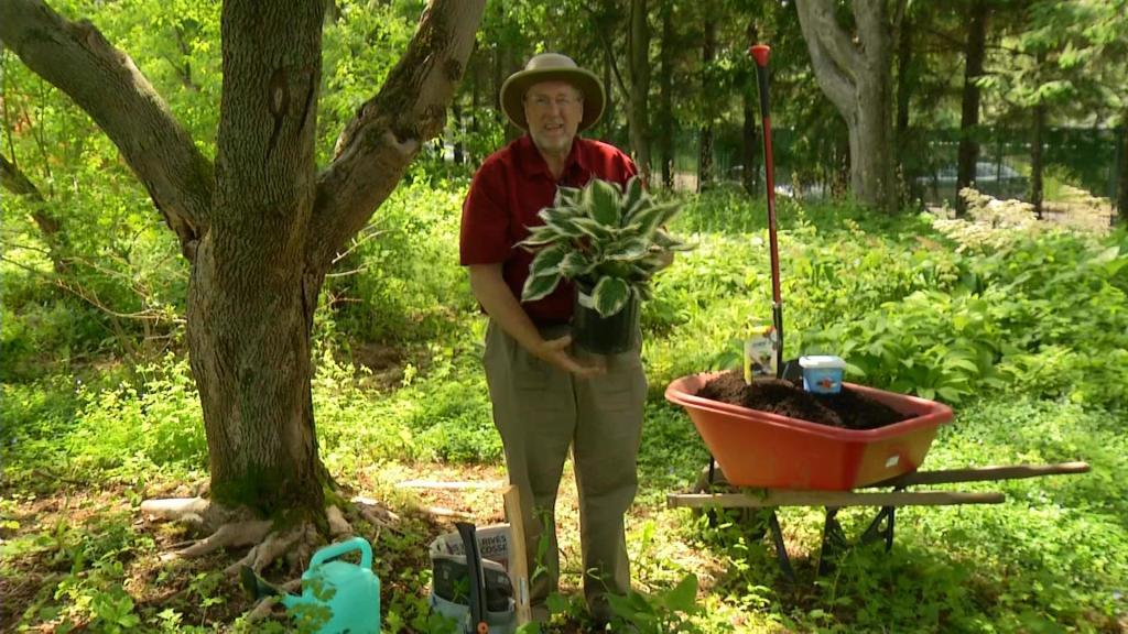 Tournage de l'émission de télévision de Dans mon jardin avec Larry Hodgson.